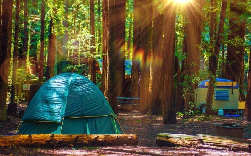 Camping Without Electricity